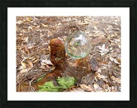 HDR CRYSTAL BALL IN A CYPREE KNEE FORK Picture Frame print