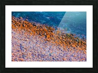 ocean with blue water and rock in summer Picture Frame print