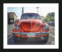 Orange Beetle Picture Frame print