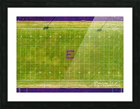England, AR | Lions Football Field Picture Frame print
