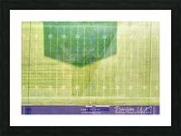 Lonoke, AR   Jackrabbits Football Field Picture Frame print