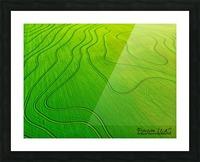 Carlisle, AR | Arkansas Rice Field Picture Frame print