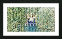 Lonoke, AR | Cover Crop  Picture Frame print