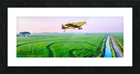 Carlisle, AR | Crop Dusting the Delta Picture Frame print