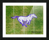 North Little Rock, AR | CAC Mustang Picture Frame print