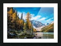 Taylor Lake, Alberta Picture Frame print