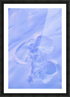 Close Up Of Snow Angel At Sunset With Blue And Pink Highlights Winter Fairbanks Interior Alaska Picture Frame print