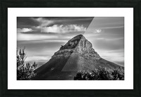 LionsHeadBW Picture Frame print