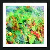 green cactus with yellow and red flower in the desert Picture Frame print