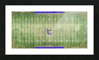 Lawrenceburg, TN | Wildcats Football Field Picture Frame print
