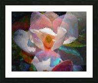 Magnolia Grandiflora Impression Picture Frame print