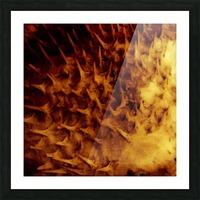CURIOSITY - ORANGE Picture Frame print