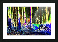 Tiger in a bamboo grove. Picture Frame print