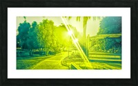 City Park at night 7 Picture Frame print