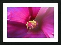 Pistil wave Picture Frame print