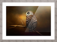 Textured Strix Varia Picture Frame print