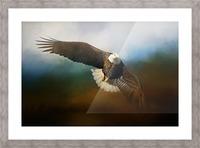 Raptor Picture Frame print