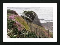 Nature Creates Picture Frame print