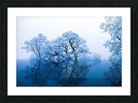 nature Picture Frame print