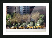 Four Taxis Four Trees Picture Frame print