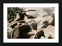 Signed Tree Roots Picture Frame print