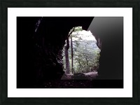 Forest Cave Picture Frame print
