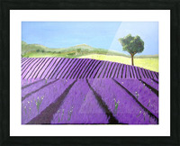 Purple Lavender Field Painting Picture Frame print