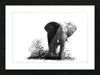 SPLASH Picture Frame print