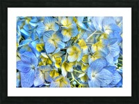 2_Rhapsody Blue Picture Frame print