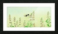 The Hummingbird Picture Frame print
