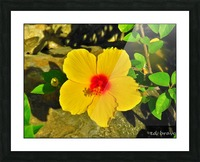 yellow & red Picture Frame print