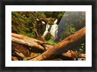 Tree Trees Fallen accross a Stream and Waterfall Digital Painting C010300_1114915 Picture Frame print