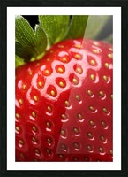 Fresh strawberry close-up Picture Frame print