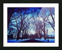 Snowy Delight Picture Frame print
