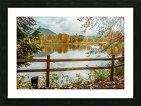 Wooden hedge blocks, falling autumn leaves, the water surface of the pond Picture Frame print