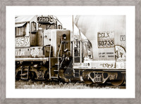 On the Tracks Picture Frame print
