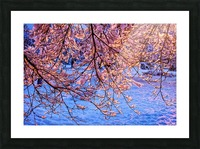 Winter  Picture Frame print