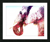 elephant 2 Picture Frame print