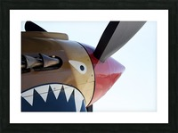 P-40 Warhawk Nose Picture Frame print