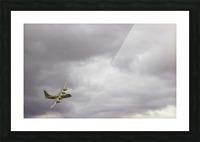Flyingwarbird Picture Frame print