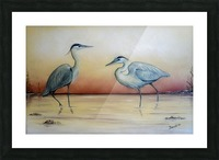 Blue Herons Picture Frame print