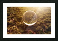 crystal ball on green grass in the morning sunshine light Picture Frame print