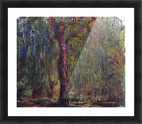 Weeping willow by Monet Picture Frame print
