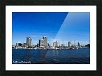 Downtown St Pete  Picture Frame print