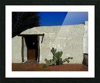 Cactus & Door Picture Frame print