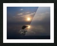 LoonAtSunrise_1527463927.19 Impression et Cadre photo