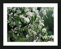 DazzleBlossoms Impression et Cadre photo