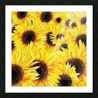 Sunflowers Field Watercolor Painting by Irina Sztukowski Picture Frame print