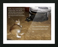 BooBoo&Goldie2 Picture Frame print