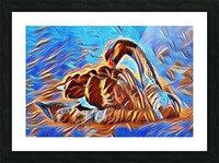 Swan Splash Picture Frame print